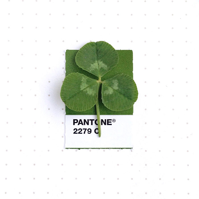 Matching Everyday Objects With Pantone Colour Swatches In