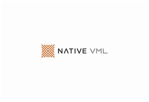 NATIVE VML celebrates 5 years of creating purpose driven work