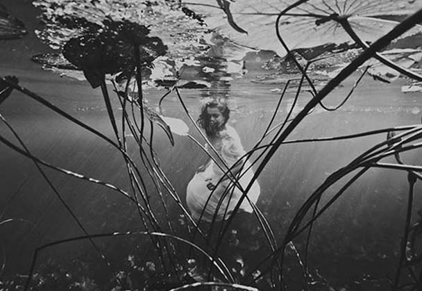Breathtakingly Beautiful Underwater Photography By Ilse Moore