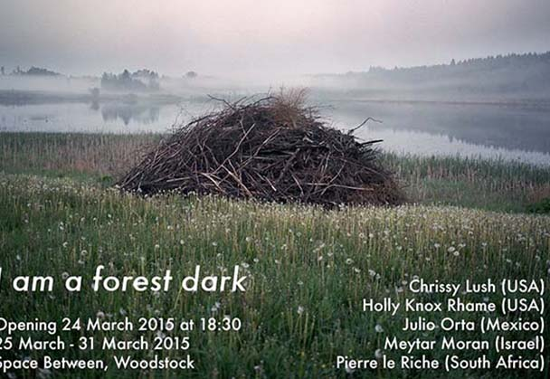I am a forest dark  exhibition features top artists